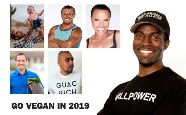 GO VEGAN IN 2019: MEAT, MASCULINITY, MYTHS AND MISCONCEPTIONS